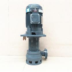 源立YLX450-65液下化工泵涂装设备泵工业流程泵